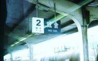 诗人杨碧薇:我的火车记忆
