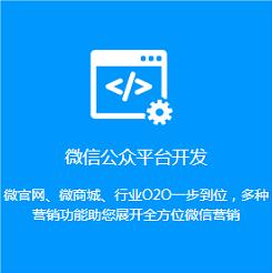 泰安商城网站开发,微信平台定制