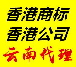 昆明香港公司國際公司注冊代理