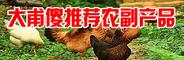 大甫傻创业网推广—江西养鸡养鸭养鹅家禽 328239690