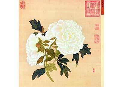 蒋廷锡的《百种牡丹谱图》