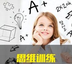 思维训练(王牌课程)