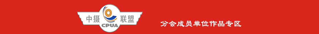 河南成员单位作品专区
