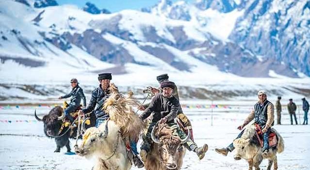 帕米尔高原上的传统竞技:牦牛叼羊