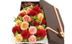 红玫瑰、粉玫瑰、香槟玫瑰