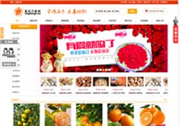 宜昌星动力电子商务有限公司