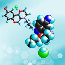 活性分子及候选药物