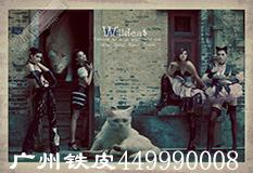 广州铁皮(449990008)
