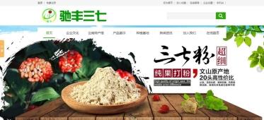 文山驰丰三七科技开发有限公司