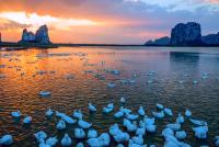 上林毛塘湿地
