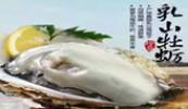 央视专题报道:乳山牡蛎、海鸭蛋