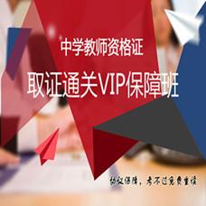 中学教师资格证-取证通关VIP保障班-新东方在线