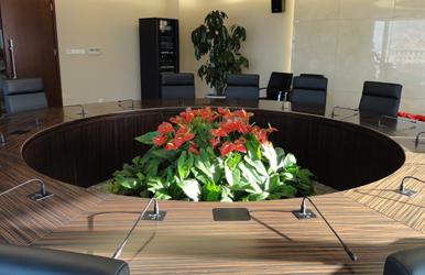 會議室花卉租擺