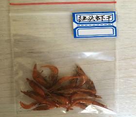 红头虾干(FD Red shrimp)