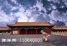谭泽辉(110040805)