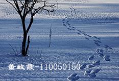 董致霞(110050150)