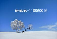 徐敏农(110060016)