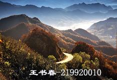 王书春(219920010)