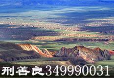 邢善良(349990031)