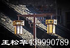 王松华(439990789)