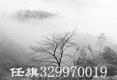 任旗(329970019)