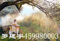 罗建宇(459980003)