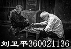 刘卫平(360021136)