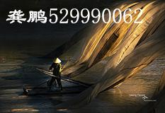 龚鹏(529990062)