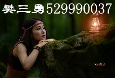 樊三勇(529990037)