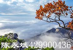陈永斌(429900436)