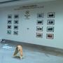 2013博鳌亚洲论坛国事活动喜来登展示墙