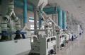 面粉设备机组