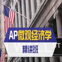 AP微观经济学精讲班