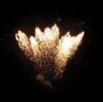64发银蜂出巢