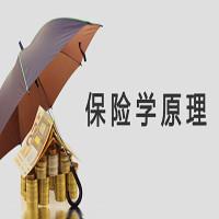 保险学原理-自学考试权威课程-【华夏大地网络课堂】