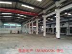 塘厦镇中心新出10米高钢构厂房出租