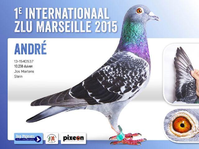 2015年马赛国际赛冠军.jpg