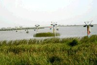 哈素海上的旅游设施