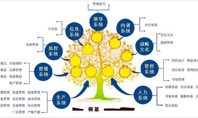邵陽企業咨詢方案.jpg