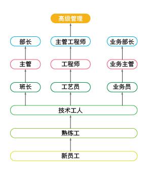 晋升流程图-01.jpg