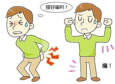 www.yyysg.cn腰痛.jpg