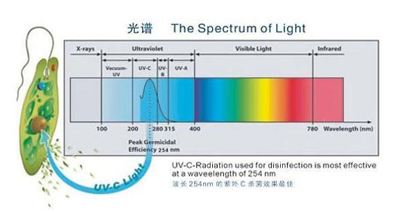 紫外线消毒器.png