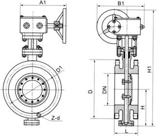 D343H Y蜗轮硬密封法兰蝶阀结构图.png