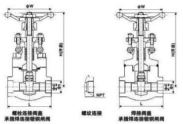 Z11 61Y锻钢内螺纹结构图.png