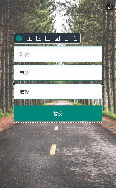 表单在H5页面中的效果.jpg