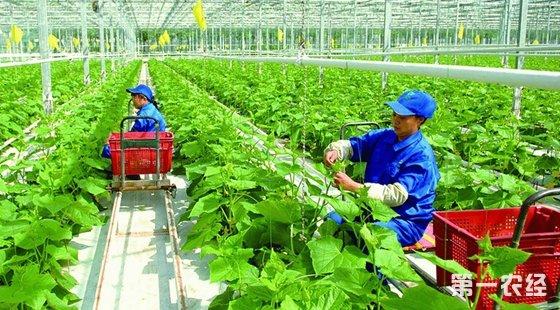 农业部部署关于推进农村产业融合一系列决策