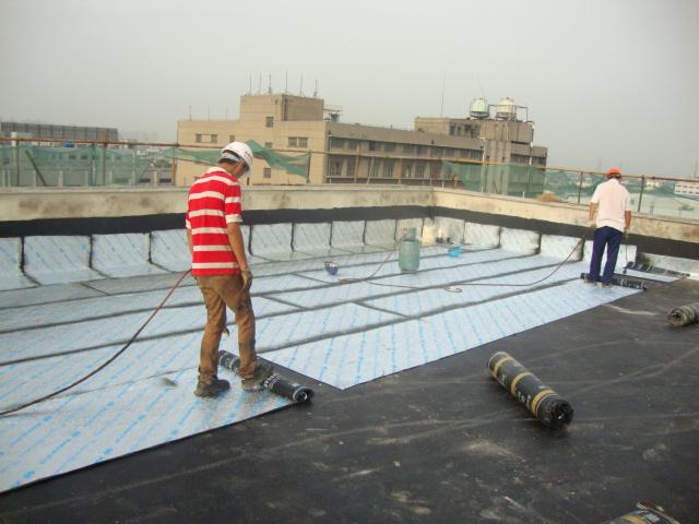 屋顶防水图.jpg