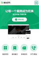 漂亮科技公司(服务型)手机网页模板
